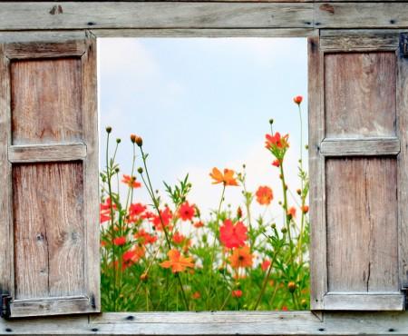 Okno z widokiem