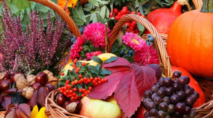 Z liści i owoców