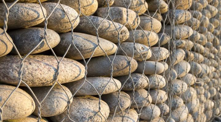 Kamienie w sieci