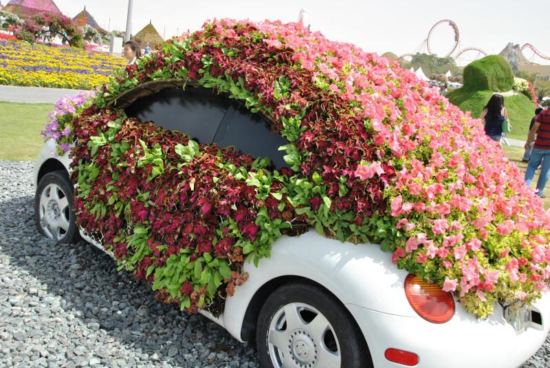 To chyba volkswagen new beetle. Jeśli tak, to jest to dobre zestawienie - żuk jest w swoim żywiole...
