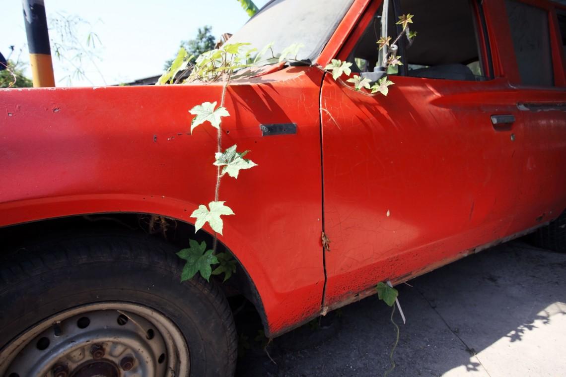 Ekologiczna jazda, czyli samochód-donica
