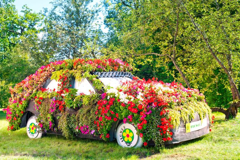 Ten właściciel chyba woli samochody niż kwiaty - szkoda mu było karoserii, więc użył pokrowca.