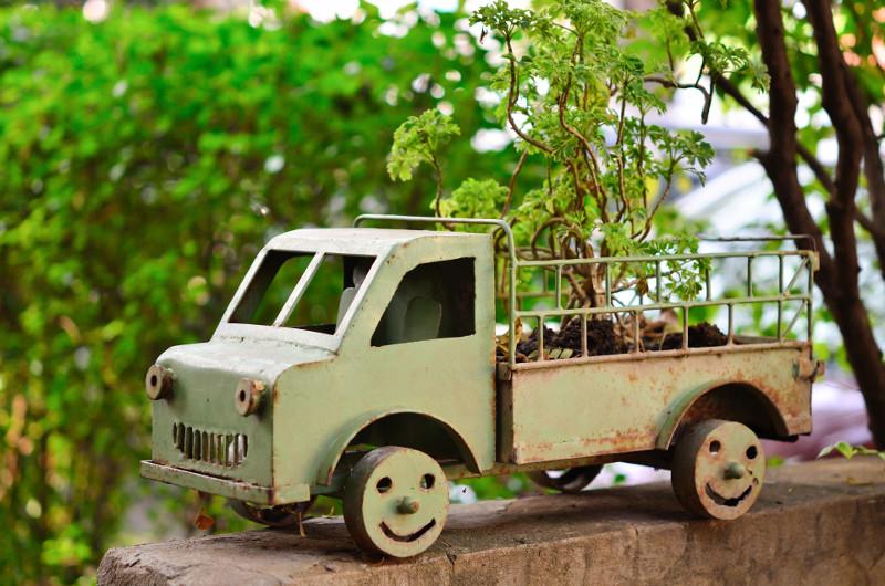 Są drzewka bonsai, są i samochody w tym rozmiarze.