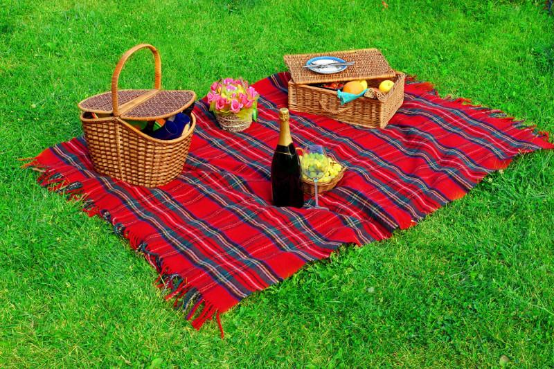 Nieraz wysraczy tylko koszt piknikowy i miękki koc.