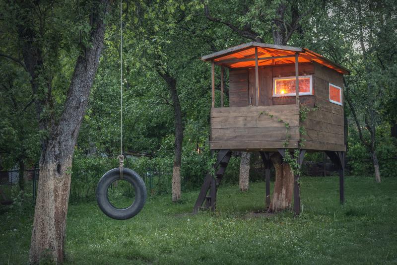 Domek oparty na starym pniu drzewa. Światło pozwala korzystać z niego nawet po zmroku.