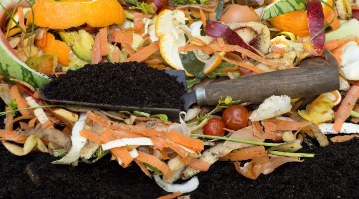 Pożytki z kompostu