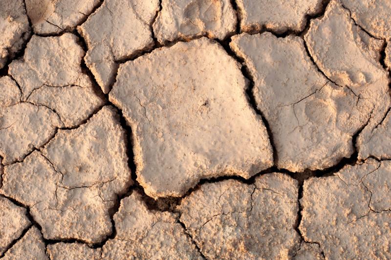 Spękana powierzchnia gliniastej gleby.
