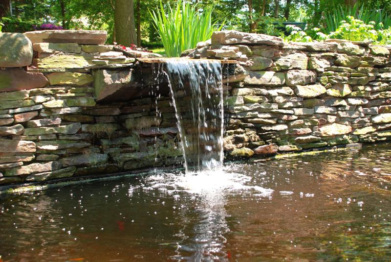 Czyszczenie urządzeń w zbiorniku wodnym.