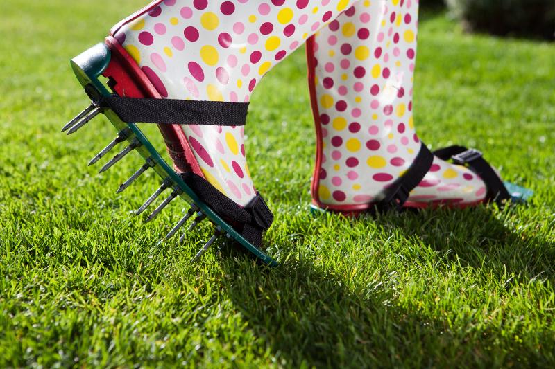 Aeracja trawnika.