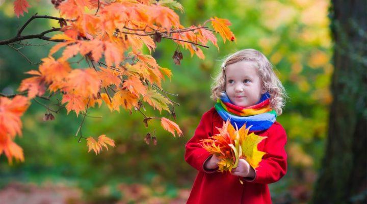 Zaproś jesień do ogrodu