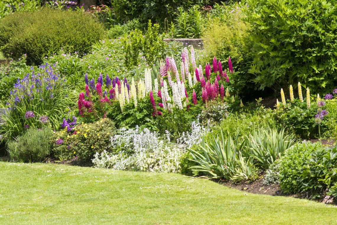 Na skarpie lovely garden for Jardin en ingles