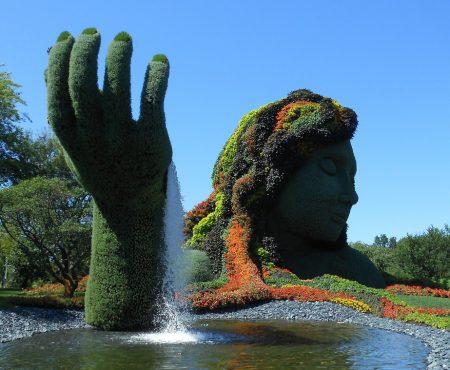 Żywe rzeźby