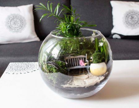 Ogródek w szklanej kuli