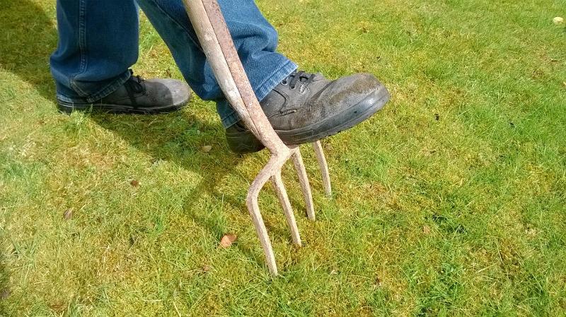 Nakłuwanie trawnika widłami