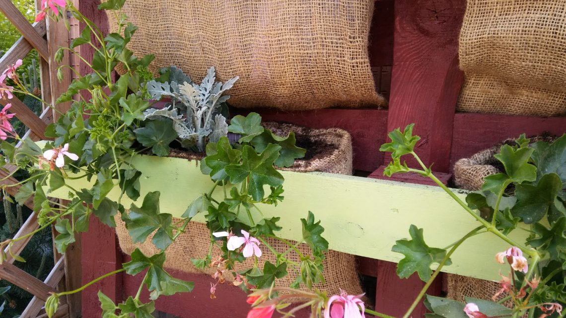 półka na kwiaty z europalety