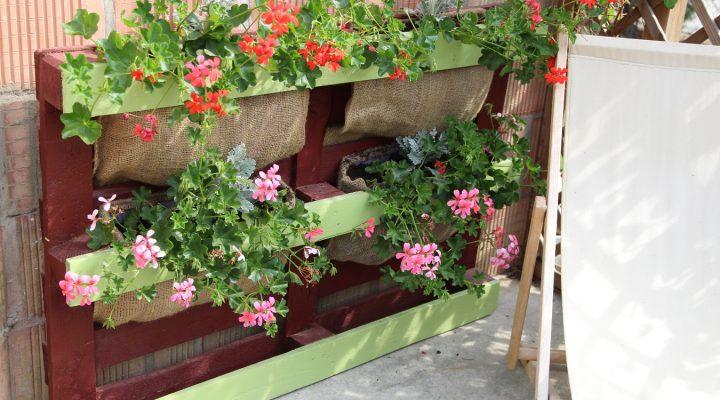 Półka na kwiaty z europalety – zrób to sam