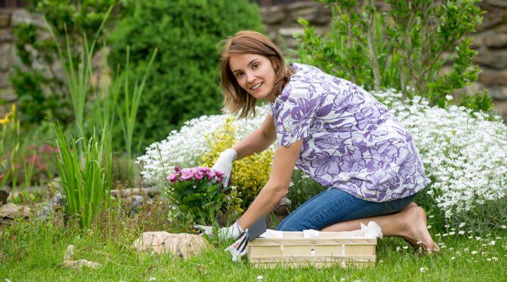 Pod czujnym okiem ogrodnika, czyli jak pozbyć się chwastów, owadów i grzybów z ogrodu