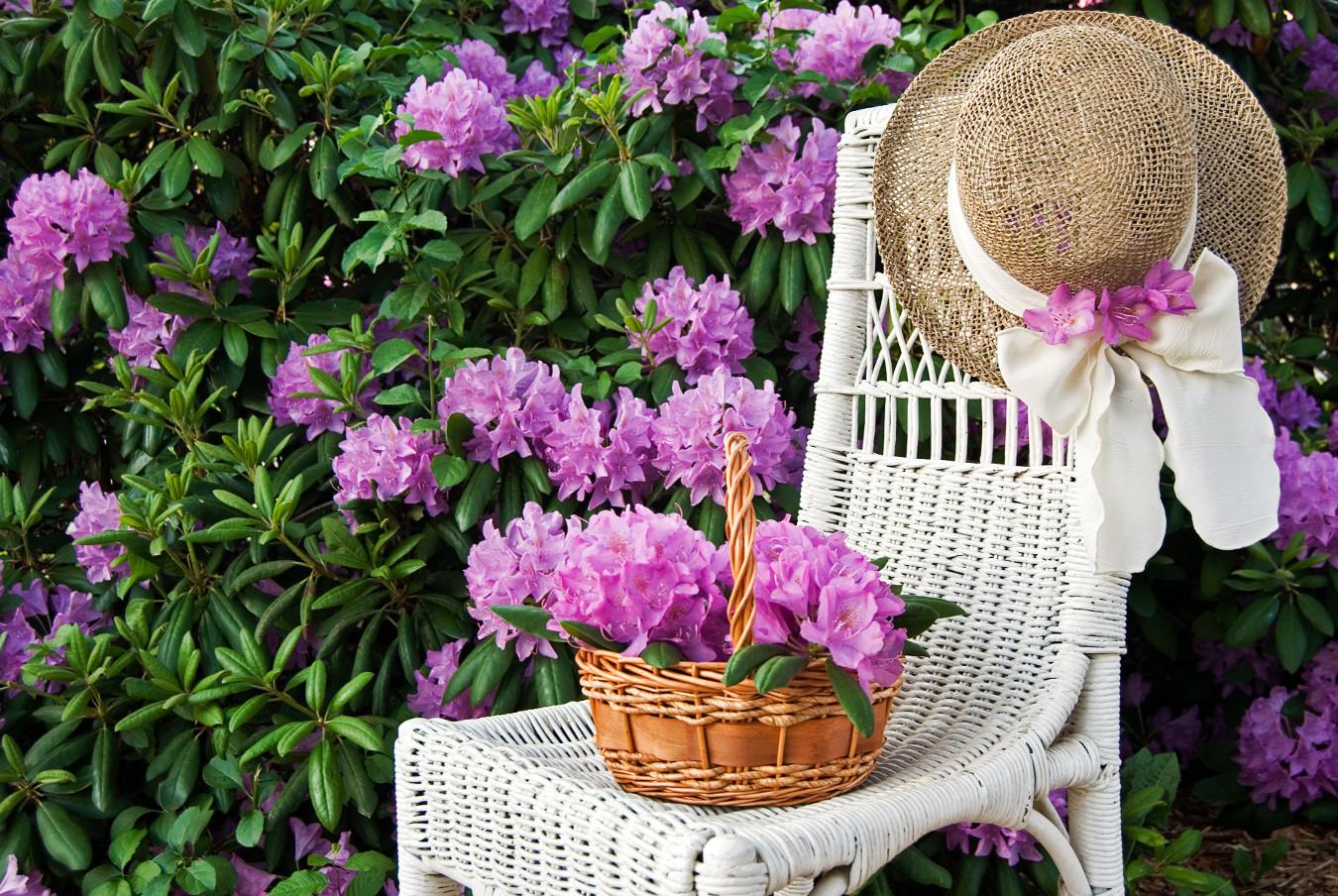 Ogrodowe plecionki lovely garden for Gartengestaltung rhododendron