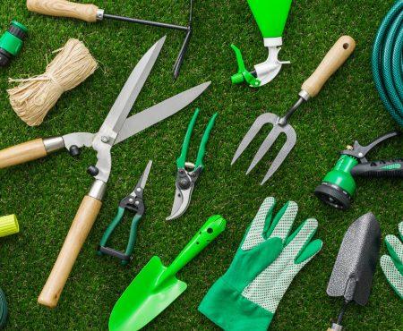 Pielęgnacja trawnika – o czym pamiętać latem?