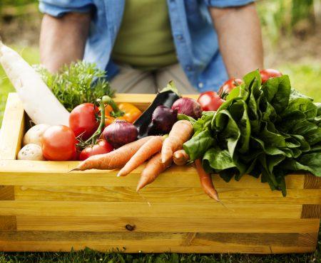 Warzywa sezonowe – co zbierzesz na przełomie wiosny i lata?