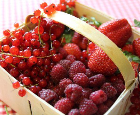 Owocowy mix do letnich smakołyków