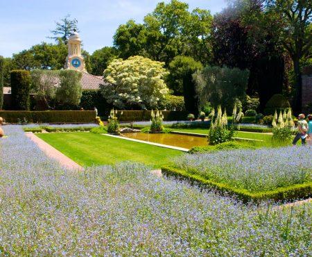 Znane ogrody – Filoli, Kalifornia w USA