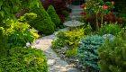 Rośliny cebulowe uprawiane w domu – kiedy je przesadzić do gruntu?