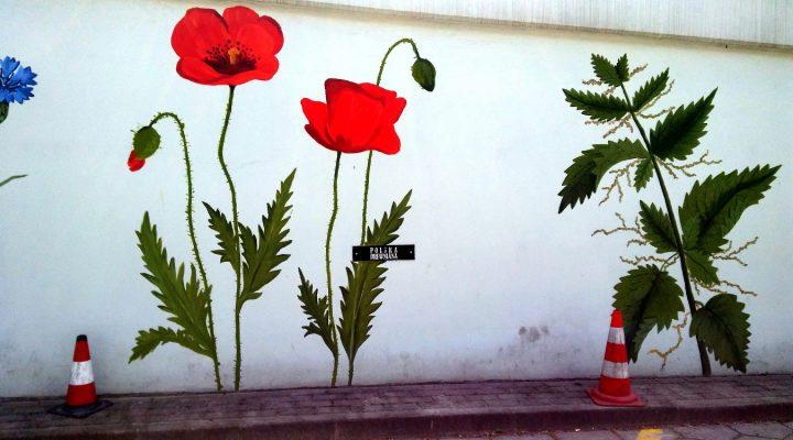 Kwiatowe graffiti