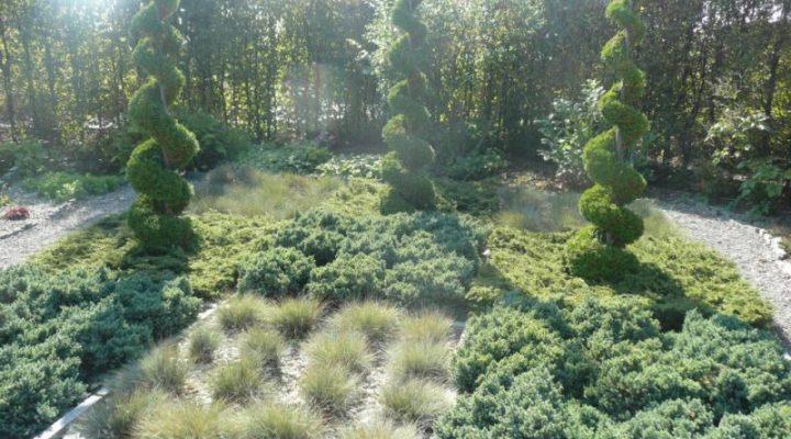 Jak zaprojektować ogród przed domem?