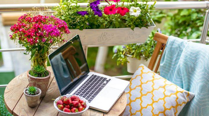 Mały ogród na balkonie – czy to możliwe?