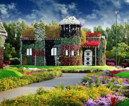 Usługi ogrodnicze. Jak dbać o ogród? Poradnik