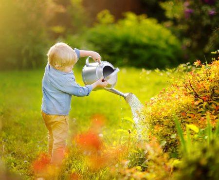 Trawnik jak marzenie w 3 prostych krokach